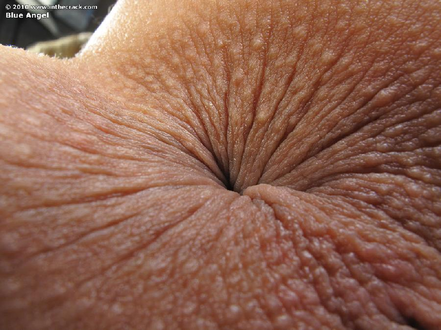 chubby squirt gallery