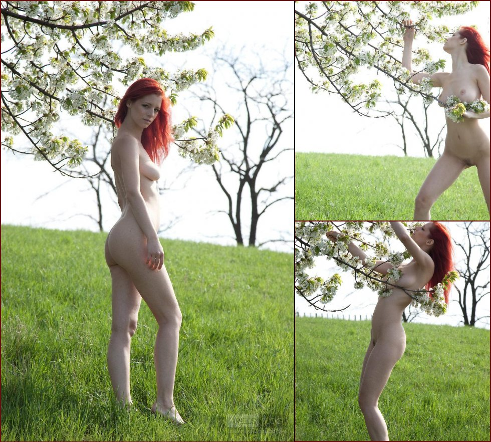 Young beauty in the meadow - Ariel - 6