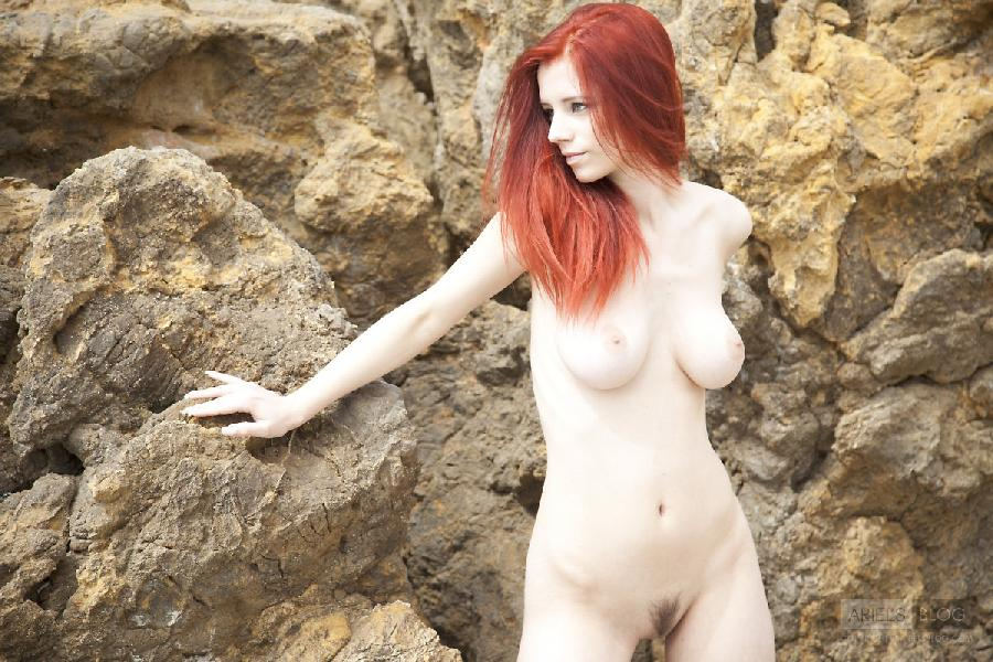 Great red head Ariel on the rock - 3