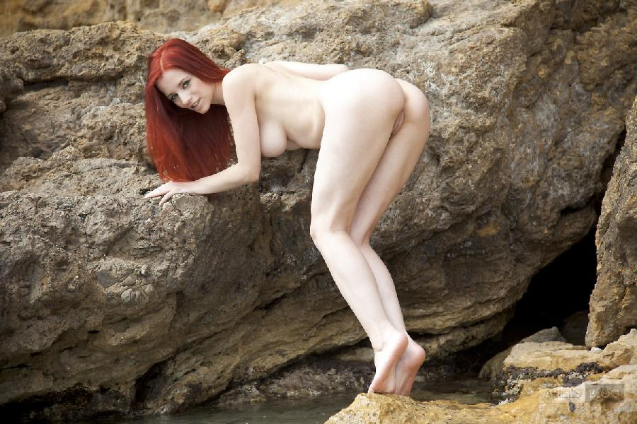 Great red head Ariel on the rock - 4