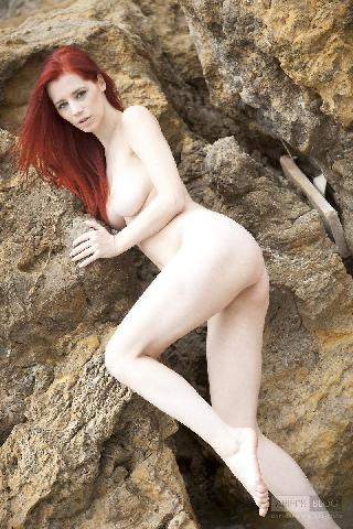 Great red head Ariel on the rock