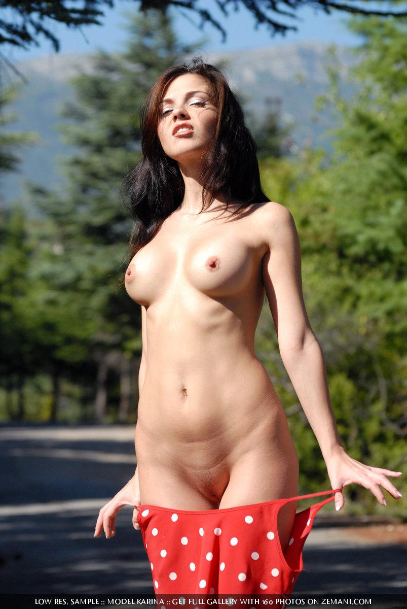 Nice brunette takes off her clothes and poses nude on the road - Karina - 3